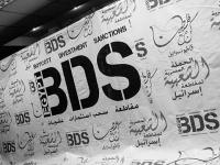 2015 yılında BDS Hareketi ve İsrail işgaliyle mücadelesi